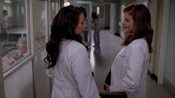 Greys anatomy season 10 episode 13 subtitles english