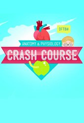 Crash Course: Anatomy & Physiology