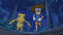 Digimon Adventure: - Episode 30 - The Mega Digimon, Wargreymon