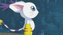 Digimon Adventure: - Episode 35 - The Glowing Angewomon
