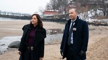 Blue Bloods - Episode 8 - More Than Meets the Eye