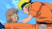 Naruto - Episode 205 - Kurenai's Top-Secret Mission: A Promise with the Third