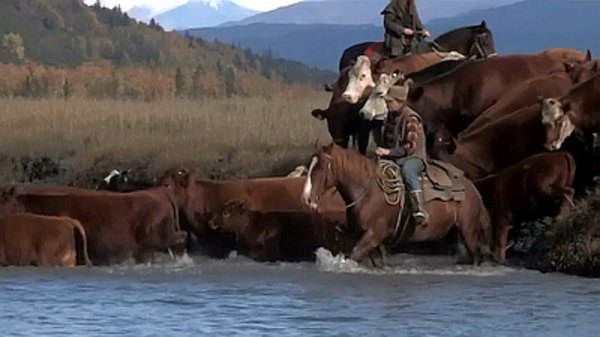 Alaska Folklore Five Mythical Creatures Of The Last Frontier   Share ...