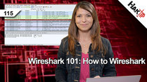 HakTip - Episode 115 - Wireshark 101: How to Wireshark