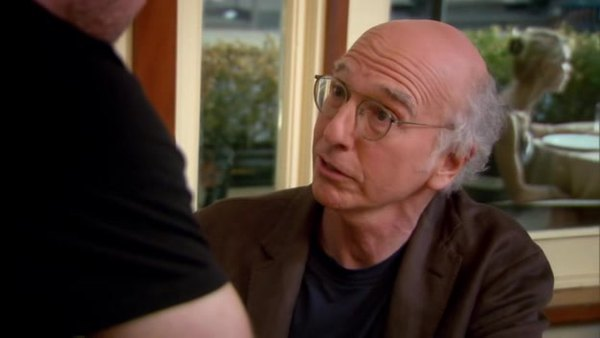 Curb your enthusiasm large vagina