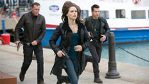 Chicago P.D. - Episode 6 - Conventions (2)