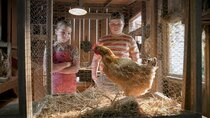 Young Sheldon - Episode 11 - A Live Chicken, a Fried Chicken and Holy Matrimony