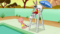 Looney Tunes - Episode 4 - Pain in the Ice / Tunnel Vision / Pool Bunny