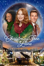 Christmas Tree Lane