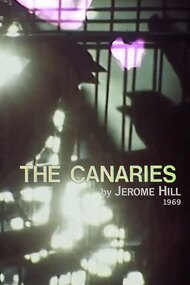 The Canaries
