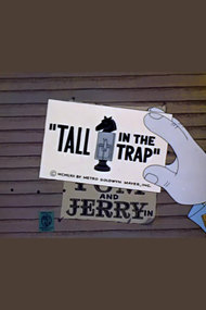Tall in the Trap