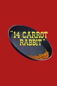 14 Carrot Rabbit