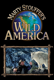 Marty Stouffer's Wild America