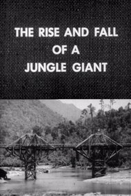 The Rise and Fall of a Jungle Giant