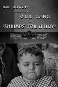 Shrimps for a Day