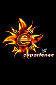 The WWE Experience